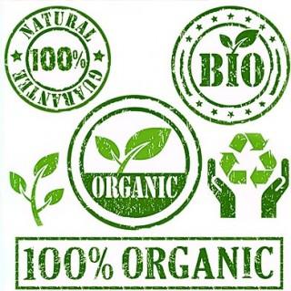 alimentos -organicos1